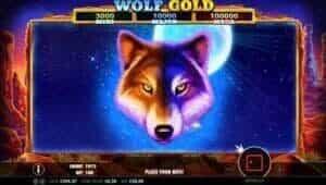 Wolf Gold 1